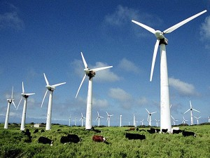 Google вкладывает средства в ветряную электростанция