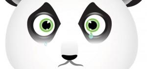 Google Panda 3.0 оказалась незначительным апдейтом Panda 2.1