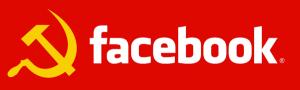 За месяц Facebook прибавил на 2 млн. человек в Рунете