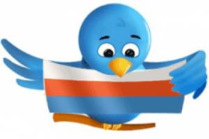 Менее 5 млн. россиян пользуются Twitter